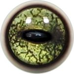 Taxidermy Frog Eyes 4b
