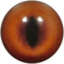 Taxidermy Fox Eyes 1
