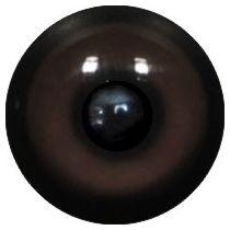 Taxidermy Marten Eyes