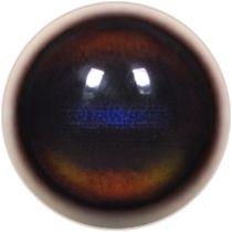 Taxidermy Grey Duiker Eyes