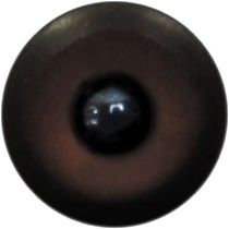 Taxidermy Universal Eyes U8.2