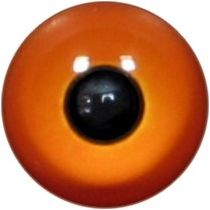 Taxidermy Universal Eyes U7.2
