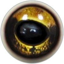 Taxidermy Grass Frog Eyes 2b