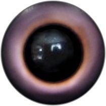 Taxidermy Universal Eyes U16