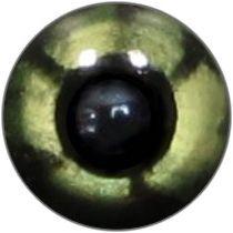 Taxidermy Reptile Eyes 7