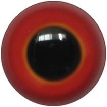 Taxidermy Universal Eyes U13